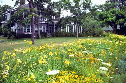 Woods Hole, Nobska Point Cape Cod vacation rental - House exterior from the south facing Vineyard Sound