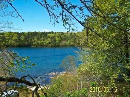 Harwich Cape Cod vacation rental - Gorgeous pond view