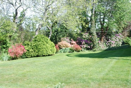 Brewster Cape Cod vacation rental - Back yard of house
