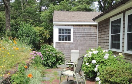 Orleans Cape Cod vacation rental - Wildflowers at patio