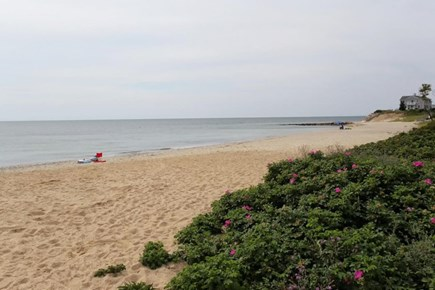 Mashpee, Popponesset Cape Cod vacation rental - Popponesset Beach - a quick walk down the street!