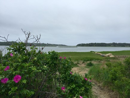 Orleans Cape Cod vacation rental - Pochet Inlet (140 steps away!)