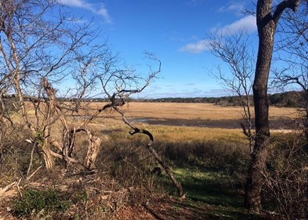 Eastham Cape Cod vacation rental - Views of the Marsh