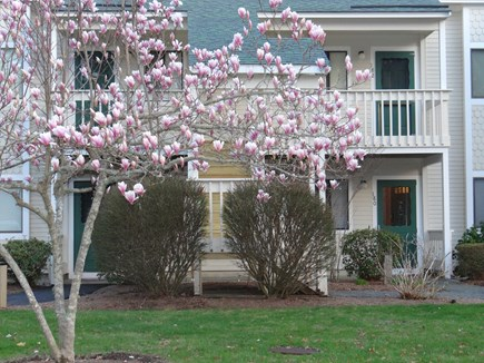 Brewster Cape Cod vacation rental - Condo view - 1st floor unit