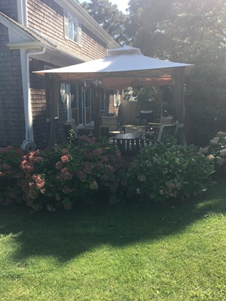 Harwichport Cape Cod vacation rental - Screened or open hut on deck with Hydrangeas.