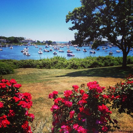 Harwichport, just across from  Cape Cod vacation rental - View Wychmere Harbor from the front door!