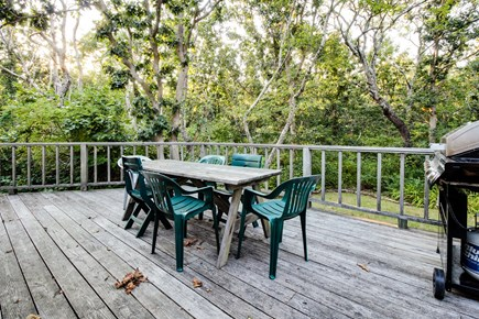 Dennis Cape Cod vacation rental - Enjoy privacy of the wrap around porch with dense greenery