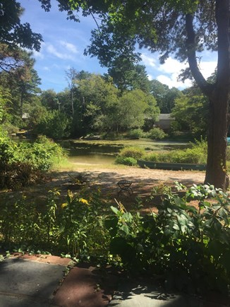 Centerville Centerville vacation rental - Soothing back yard, wade or boat / kayak to lake from here!