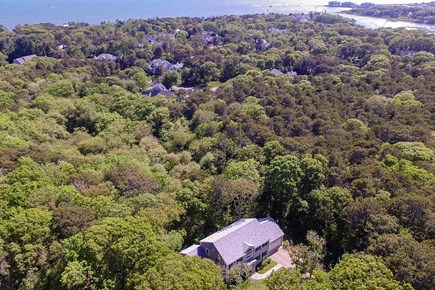 Harwich Cape Cod vacation rental - A great location tucked into the woods