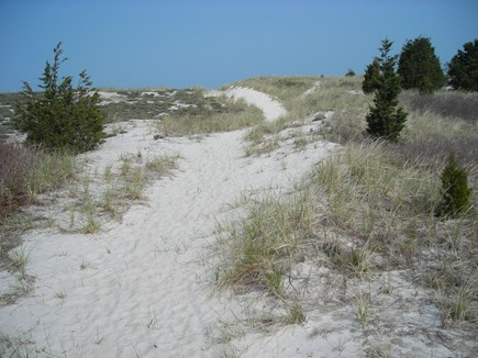 West Falmouth Cape Cod vacation rental - Dune to beach