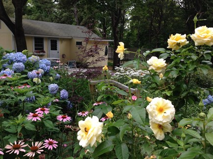Brewster Cape Cod vacation rental - Welcoming garden!
