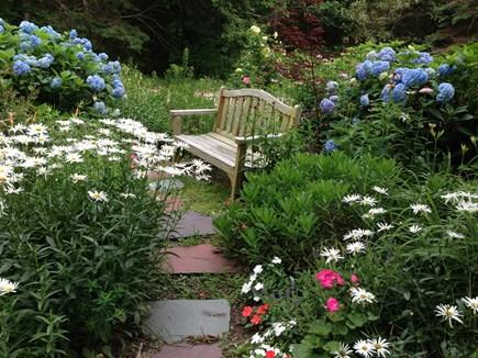 Brewster Cape Cod vacation rental - Big flower garden
