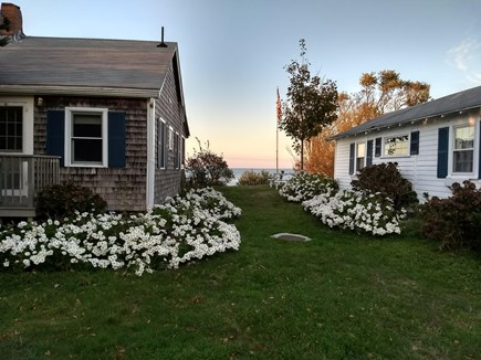 Brewster Cape Cod vacation rental - One of 3 cottages on the beach bluff.
