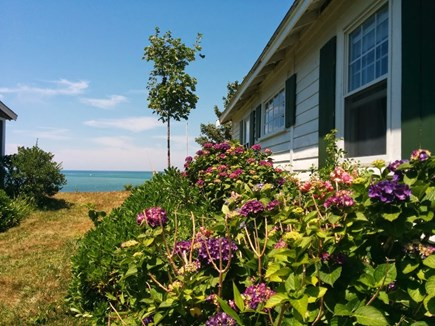 Brewster Cape Cod vacation rental - Side of cottage