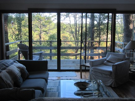 Wellfleet Cape Cod vacation rental - The ground-floor living room faces the marsh.