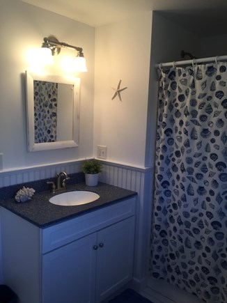 Chatham Cape Cod vacation rental - Downstairs bathroom