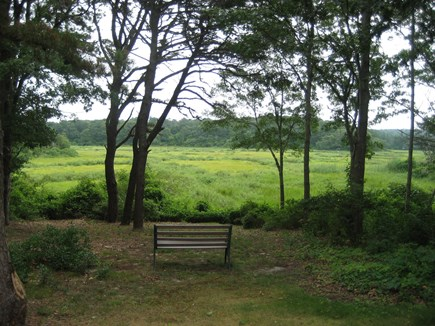 Yarmouth Port Cape Cod vacation rental - Back yard overlooking Great Marsh