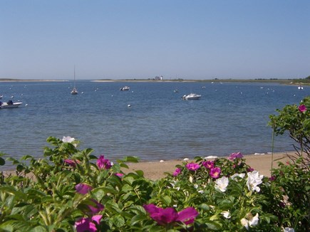 Chatham Cape Cod vacation rental - Nearby Stage Harbor
