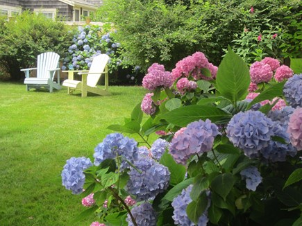 Harwich Port Cape Cod vacation rental - Private back yard - play croquet after a day at the beach