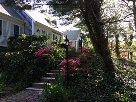 East Dennis Cape Cod vacation rental - Front Entrance - Beautifully landscaped!