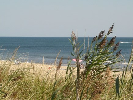 Eastham Cape Cod vacation rental - Surf and sand!