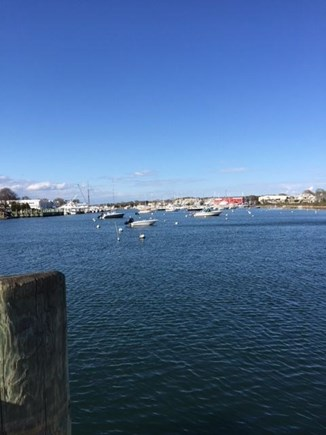 Falmouth Heights Cape Cod vacation rental - Falmouth harbor...a short walk from house.
