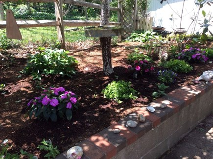 Eastham Cape Cod vacation rental - Garden where birdbaths attract feathered  friends