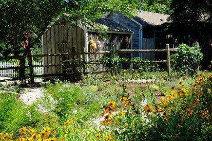 Eastham Cape Cod vacation rental - Old paddock converted into wildflower/pollinator garden