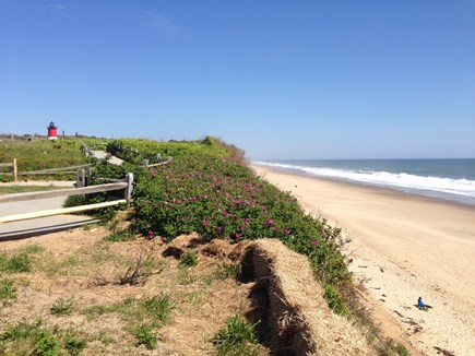 North Eastham Cape Cod vacation rental - Beautiful Nauset Light Beach