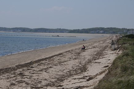 North Truro Cape Cod vacation rental - On the Bay Beach