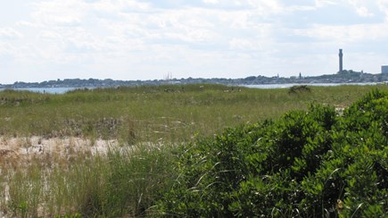 Truro Cape Cod vacation rental - Looking at the Provincetown Monument