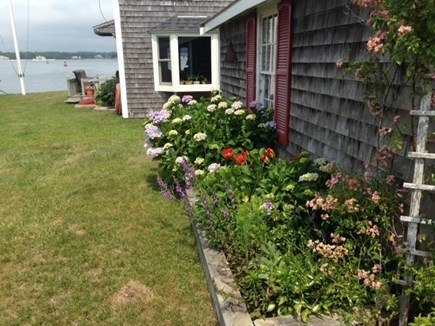 Bourne Cape Cod vacation rental - Waterview of side yard. Perennial and annual plants.
