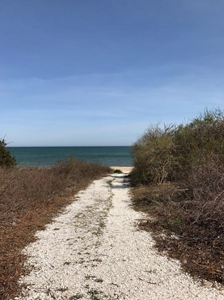 New Seabury, Maushop Village New Seabury vacation rental - Seashell path down to beach around the corner from patio