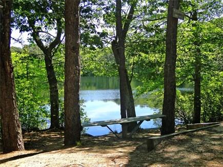 Brewster Cape Cod vacation rental - Neighborhood Owl Pond