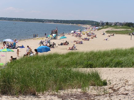 Chatham Cape Cod vacation rental - Hardings Beach:  Our Beach