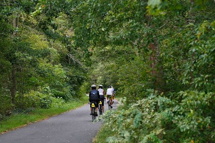 Chatham Cape Cod vacation rental - Cape Cod Rail Trail Access:  One Mile From Our Home