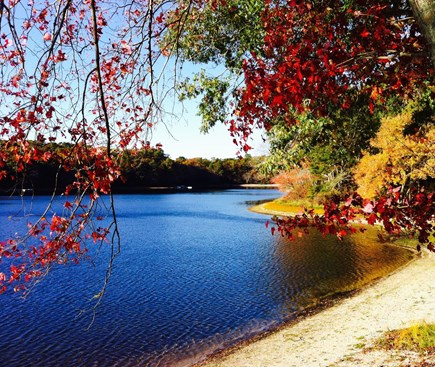 East Falmouth on fresh pond Cape Cod vacation rental - Our small beautiful lake in October