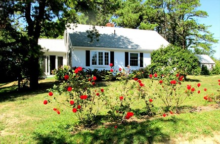 East Orleans Cape Cod vacation rental - View of house