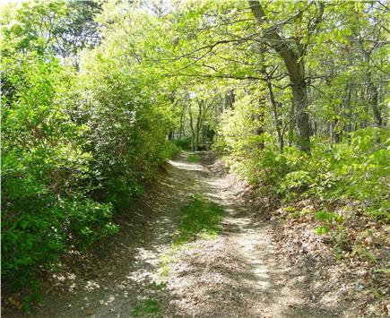 Dennis Cape Cod vacation rental - Mermaid Cottage trails side of house