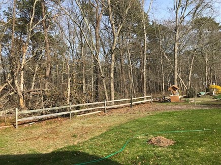 South Yarmouth Cape Cod vacation rental - Back Yard abuts conservation land. Walk to pond behind property.