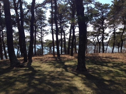 Chatham Cape Cod vacation rental - View from Front yard