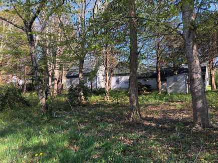 Orleans Cape Cod vacation rental - Secluded lot