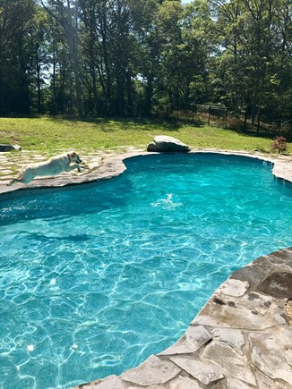 Yarmouth Port Cape Cod vacation rental - Heated salt water pool with sunbathing rock