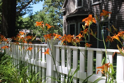 Centerville Centerville vacation rental - Quintessential Cape Cod home within walking distance to village