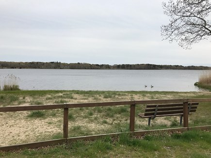 W Yarmouth Cape Cod vacation rental - Swan pond beach