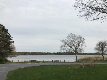 W Yarmouth Cape Cod vacation rental - Swan Lake 200 yards down the road