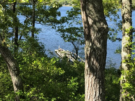 Yarmouth Cape Cod vacation rental - View from deck down to the dock (two sunbathers).