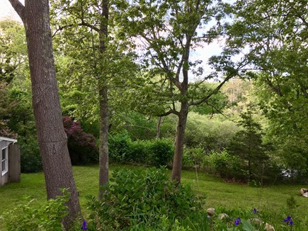 Eastham Cape Cod vacation rental - Large Property With Beautiful Plantings...