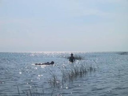 Wellfleet Cape Cod vacation rental - Floating on the calm waters of the Bay