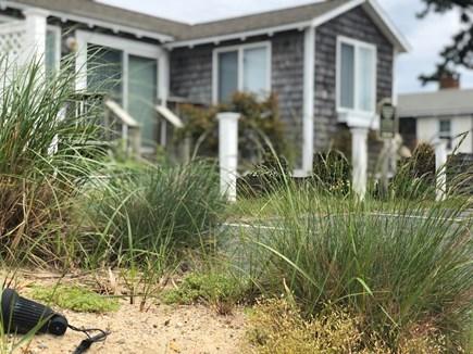 Dennis Port Cape Cod vacation rental - Welcome to your new summer vacation spot - Hurricane Pines!